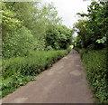 SP4417 : Green Lane, Woodstock by Jaggery