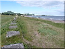 NO3901 : Tank traps at Leven beach by Richard Law