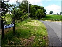 H5349 : Ashfield Road, Ashfield or Grange by Kenneth  Allen