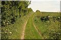 TF0134 : Short Hollow by Richard Croft
