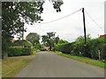 TM1598 : Ashwellthorpe Road, Wreningham by Adrian S Pye