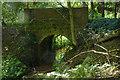 TQ0067 : Bridge over the Trumps Mill sluice by Alan Hunt