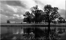 NZ1221 : Low Pond, Raby Castle by Tony Simms