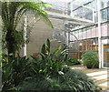 SU9771 : Savill Garden, Temperate House spiral staircase by David Hawgood