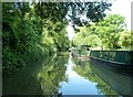ST7862 : Kennet & Avon Canal - Just north of Dundas by Rob Farrow