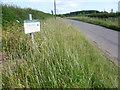 SK9917 : Roadside Nature Reserve alongside Holywell Road by Marathon