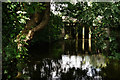 TQ0760 : Weir on the River Wey by Peter Trimming