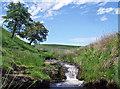 SK0068 : River Dane by Stephen Burton