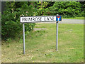 TM0481 : Primrose Lane sign by Adrian Cable