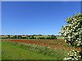 SE4105 : On the horizon is Darfield by Steve  Fareham