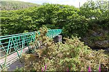 SN7078 : Footbridge over Afon Rheidol by David P Howard