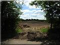 SU2762 : Wilton Common by Vieve Forward