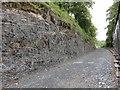 S5410 : Railway Cutting by Mat Tuck