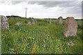 NO9096 : Aquhorthies Recumbent Stone Circle (7) by Anne Burgess