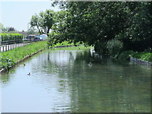 TL3706 : The New River south of Mill Lane, EN10 (2) by Mike Quinn
