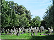 TL3706 : The Church of St. Augustine, Broxbourne - graveyard by Mike Quinn