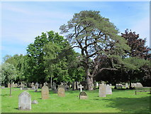TL3706 : The Church of St. Augustine, Broxbourne - graveyard (2) by Mike Quinn