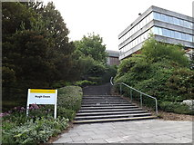 SN5981 : Steps to the Hugh Owen Building by Adrian Cable