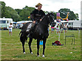 SO6452 : Bromyard Gala - magnificent beasts by Chris Allen