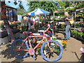 SP9211 : The Yarn Bombed Bike surrounded by flowers on Tring's Market Day by Chris Reynolds