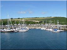 D3115 : Glenarm marina [1] by Michael Dibb