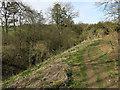 TL6458 : Path along Devil's Ditch by Hugh Venables