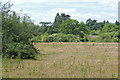 SU9882 : Field near Stoke Green by Alan Hunt