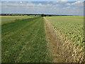 TL3465 : Bridleway to Conington by Hugh Venables
