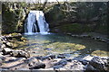 SD9163 : Janet's Foss by N Chadwick