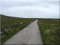 NC4741 : The Loch Hope road by David Purchase