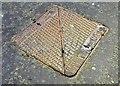 J3373 : NTL/Brickhouse access cover, Belfast - July 2015(1) by Albert Bridge