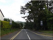 SN5981 : Cefnllan, Llanbadarn Fawr by Adrian Cable