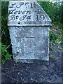 NO4203 : OS benchmark - Upper Largo, Buckthorns milestone by Richard Law