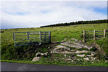 SD9531 : Open gate on New Laithe Moor by Bill Boaden