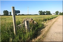 TM4163 : Footpath at Knodishall Green by Des Blenkinsopp
