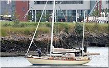 "J3475 : The ""Twilight"", River Lagan, Belfast (July 2015) by Albert Bridge"