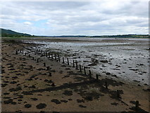 NS4074 : Derelict timber structure on the foreshore near Dumbarton Castle by Gordon Brown