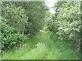 NT6342 : Disused railway across Gordon Moss by M J Richardson