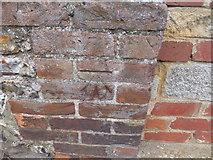 TF6830 : Cut Mark 60 Chapel Rd Dersingham by Monica Stagg