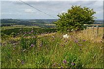 ST9120 : View near Win Green by David Martin