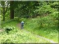 NY3203 : Path through Fletcher's Wood by John H Darch