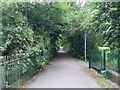 SJ8446 : Newcastle-under-Lyme: path along former railway line by Jonathan Hutchins