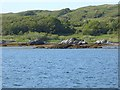 NM6486 : North shore of Loch nam Ceall by Oliver Dixon