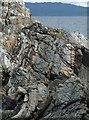 NM6382 : Rocky coastline, Ru Arisaig, Inverness-shire by Claire Pegrum