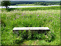 NY6391 : Bench beside the Lakeside Way by Oliver Dixon