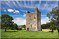 R9178 : Castles of Munster: Ballintotty, Tipperary - revisited (1) by Mike Searle