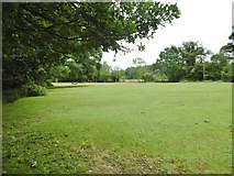 SU3012 : Bartley, lawn by Mike Faherty