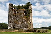S1133 : Castles of Munster: Ballydoyle, Tipperary (1) by Mike Searle