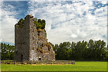 S1133 : Castles of Munster: Ballydoyle, Tipperary (5) by Mike Searle