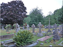 SU8363 : St John the Baptist, Crowthorne: churchyard (c) by Basher Eyre